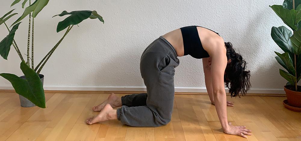 Geschichte des Yoga Philosophie
